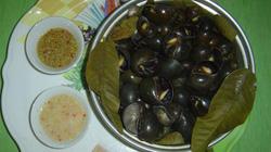 Về Tri Tôn ăn ốc đá treo giàn bếp
