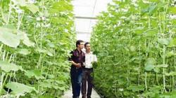 Doanh nghiệp với nông nghiệp