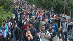 Bao nhiêu chiến binh IS trà trộn vào dòng người tị nạn Syria?