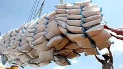 """Xuất khẩu gạo: Vừa """"ngủ quên"""", vừa """"nổ"""""""