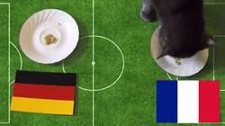 Tiên tri Cass dự đoán kết quả Đức vs Pháp (2h ngày 8.7)