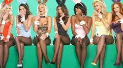 Bí ẩn về người mẫu thỏ trong câu lạc bộ Playboy