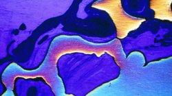 Phát hiện siêu kim loại cứng gấp 4 lần titanium