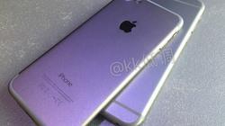 Video trên tay iPhone 7, bán ra ngày 16/9