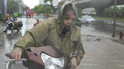 Chùm ảnh: Người Hà Nội vật vã chống chọi bão số 1