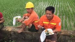Công nhân ăn cơm tại ruộng xử lý sự cố điện sau bão số 1
