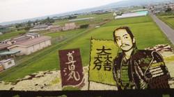 """Choáng với nghệ thuật """"vẽ tranh"""" trên đồng lúa ở Nhật Bản"""