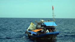 Đưa ngư dân bị co giật vào đảo Trường Sa Lớn cứu chữa