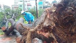 Hà Nội ra công điện khẩn ứng phó bão số 2