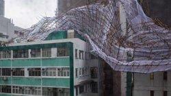 Cây đổ, nhà tốc mái khi bão số 2 càn quét Trung Quốc