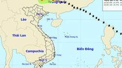Bão số 2 suy yếu thành ATNĐ, nhiều nơi mưa to