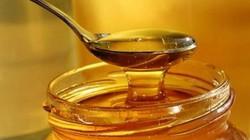 Đề nghị Bộ TT-TT xử lý thông tin 85% mật ong Cà Mau bị pha chế
