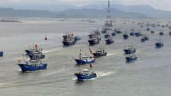 TQ thừa nhận không còn cá ở ven biển để đánh bắt