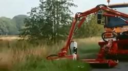 """""""Choáng"""" với công nghệ cắt cỏ đường cao tốc ở nước ngoài"""