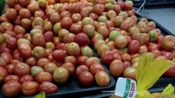 Cách nhận biết 8 loại rau, củ thường dùng hóa chất