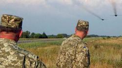 Ukraine kiện Nga về Crimea: Con kiến kiện củ khoai?