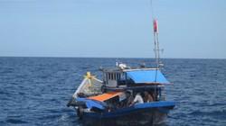 Áp thấp nhiệt đới, nhiều tàu cá gặp nạn trên biển