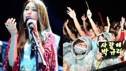 Fan Việt đội mưa hát cùng cựu trưởng nhóm Kara