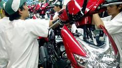 Sẽ kiểm tra việc sử dụng lao động tại Công ty Honda Việt Nam