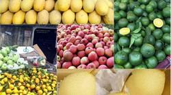 Tám loại hoa quả Trung Quốc nhập về Việt Nam nhiều nhất