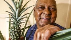 Anh: Mất 8 năm cuộc đời để trồng 1 quả dứa