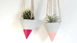 15 mẫu thiết kế chậu cây treo trong nhà vừa bắt mắt vừa độc đáo