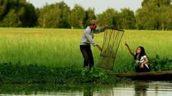 Ảnh: Vẻ đẹp ngỡ ngàng của Tràm Chim mùa nước nổi