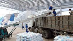 Lâm Thao dẫn đầu thị trường phân lân