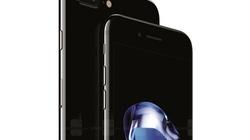 Công bố giá bán iPhone 7 và iPhone 7 Plus tại Ấn Độ