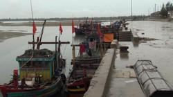 Người mua vẫn hồ nghi chuyện hải sản đánh bắt gần bờ hay xa bờ