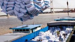Trung Quốc cấp phép cho 8 công ty khử trùng gạo xuất khẩu