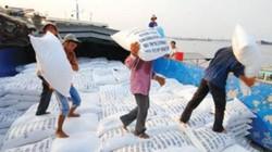 Cần cẩn trọng khi xuất khẩu gạo sang Mỹ