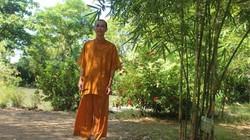 """Thăm """"Sơn Trà Tịnh Viên"""" của sư thầy nặng lòng với tre trúc Việt"""