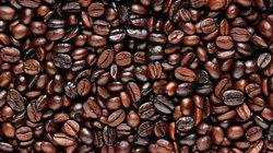 Giá nông sản hôm nay 4.7: Giá cà phê hứa hẹn bất ngờ, tiêu vẫn ảm đạm