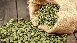 Giá nông sản hôm nay 6.7: Cung thắt chặt, cà phê giữ giá tốt; cao su tăng tới 60%