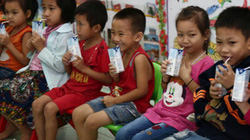 Nghệ An: Tiếp tục triển khai Chương trình Sữa học đường trong 3 năm