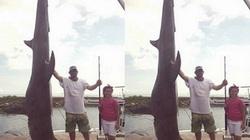 Mỹ: Câu được cá mập đầu búa 4 tạ, phá kỉ lục 37 năm