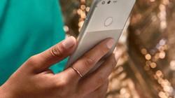 So sánh iPhone 7 với Google Pixel: Ai hơn ai?
