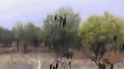 Video: Trời rầm rầm bắn đá xuống đất ở Tây Ban Nha