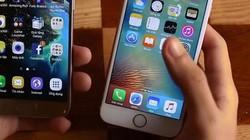 Giá ngang nhau, nên chọn mua iPhone 6s hay Galaxy S7?