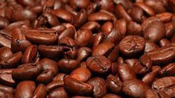 Giá nông sản hôm nay 21.7: Tiêu tương lai mù mịt, cà phê tăng 100 đ/kg