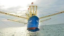 """Giao lưu trực tuyến: """"Tàu vỏ thép 67- làm sao để nâng bước ngư dân"""""""