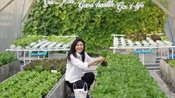 Mê mẩn vườn rau xanh, nấm sạch của cựu nữ Thủ tướng Thái Lan