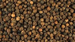 GIÁ NÔNG SẢN HÔM NAY 28.7: Giá hạt tiêu tăng tiếp, cà phê thu về 2,12 tỷ USD