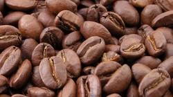 Giá nông sản hôm nay 28.7: Tiêu sẽ lên 90.000 đ/kg, cà phê lại giảm nhẹ?