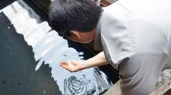 Phó Thủ tướng tận tay kiểm tra bể nước tại ổ dịch sốt xuất huyết