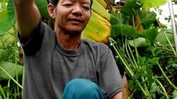 Người đàn ông chuyên móc tôm câu lươn ở Hà Nội