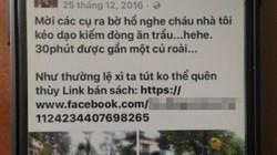 """Thông tin mới nhất về vụ """"cháu bé chơi đàn trên phố đi bộ Hà Nội"""""""