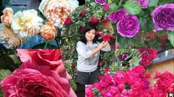 """Trăm loài hoa quý hiếm ở """"thiên đường mặt đất"""" của mẹ Việt trời Tây"""