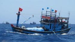 3 tàu vượt sóng tìm kiếm 5 ngư dân mất tích tại Hoàng Sa